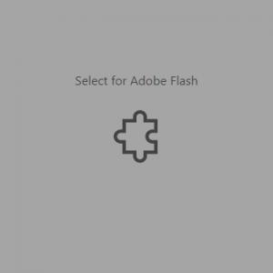 Ejemplo de letrero cuando el sitio tiene un objeto en Flash